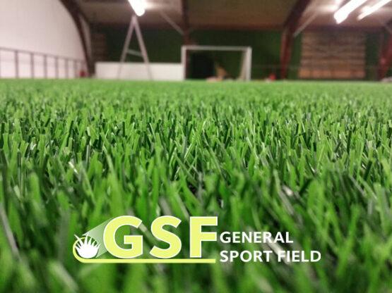 Amenajare teren de fotbal cu gazon artificial Frankfurt